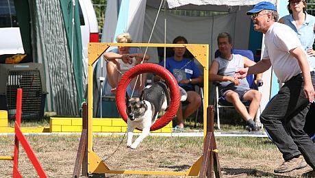 Agility-Turnier des MV Berolina, August 2006, Photo: H. Wollermann