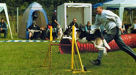 Beim Agility-Turnier des MV Berolina, Photo: H. Wollermann, 06.08.2005